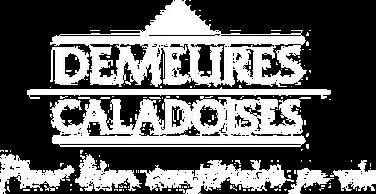 Cas client Demeures Caladoises par Nowlab