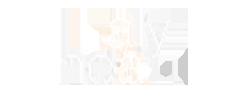 Cas client Alynea par Nowteam